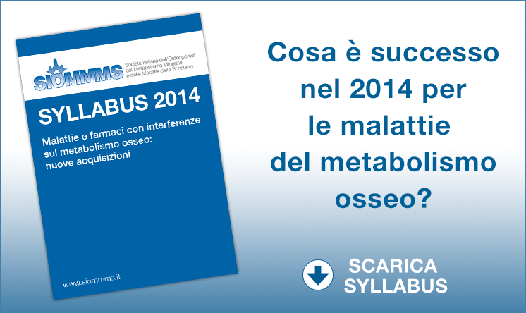 Syllabus SIOMMMS 2014