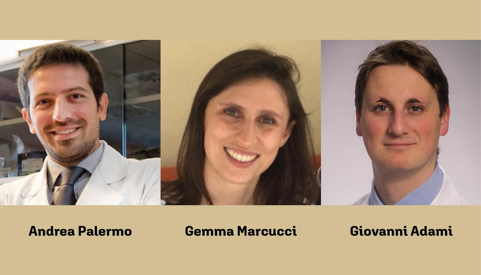 Tre giovani soci SIOMMMS ai vertici della ricerca internazionale sulle patologie dell'osso